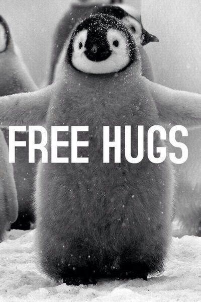 Free Hugs free hugs picture quotes