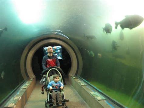madrid guas infantiles madrid para ni 241 os gu 237 a de viajes en tripadvisor