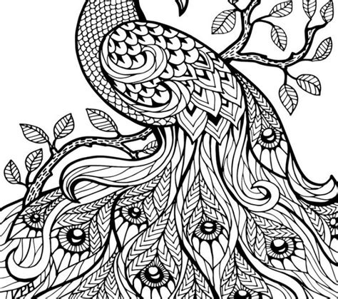blank coloring pages for adults blank coloring book pages kids coloring page