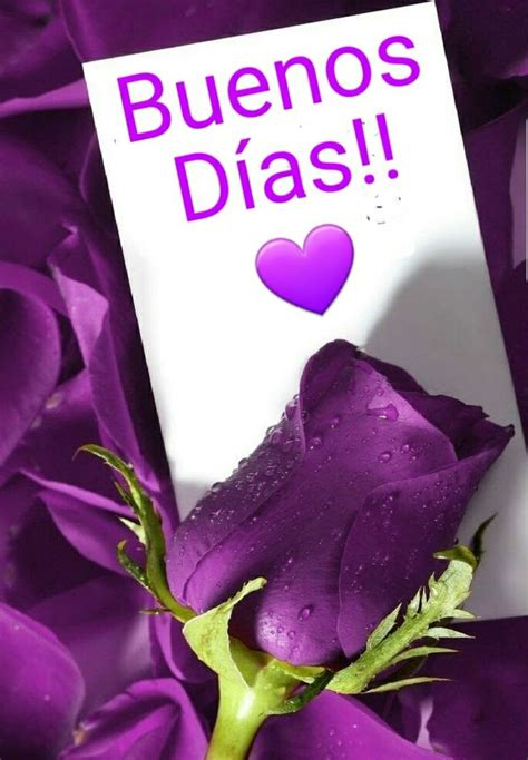 imagenes hermosas d buenos dias the 25 best buenos dias princesa frases ideas on
