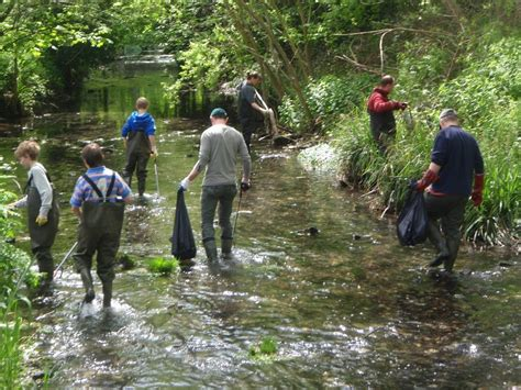 wandle kristall residents lead the way i science