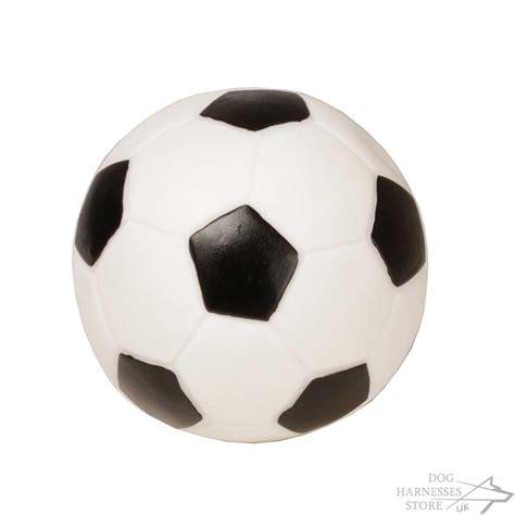 soccer for dogs soccer uk 2014