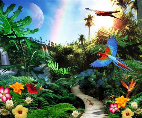 Tropical Jungle tropical jungle collage collage