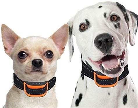 best bark collar for small dogs 1000 ideas about small bark collar on all breeds of dogs small dogs