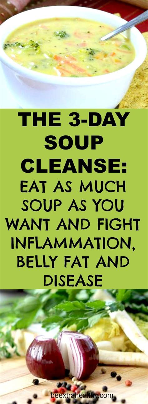 3 Day Detox Soup Cleanse by Best 25 3 Day Cleanse Ideas On 3 Day Juice