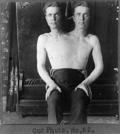 libro harper and the circus conjoined twins strange and odd
