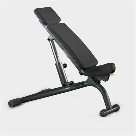 adjustable height bench element adjustable weight workout bench