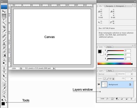 software archives page 51 of 105 macnwins bbc gcse bitesize graphics software the basics