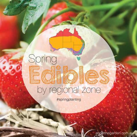 The 25 Best Planting Guide Australia Ideas On Pinterest The Australian Fruit And Vegetable Garden