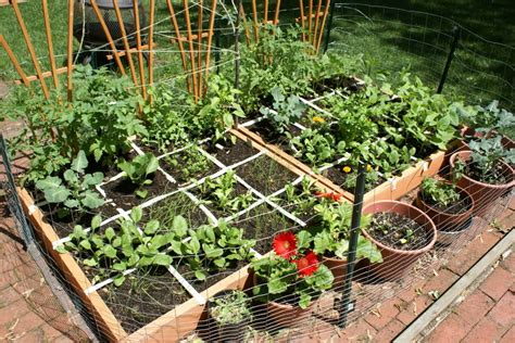 Food At Square Garden by Heirloom Gardening And Growing Your Own Food