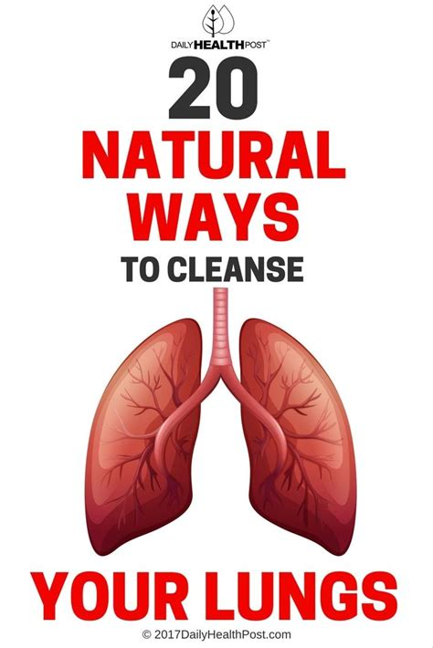 Best Way To Detox Lungs by Best 25 Lungs Ideas On Lung Detox E