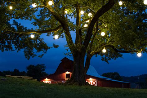 outdoor string and festive lighting outdoor lighting
