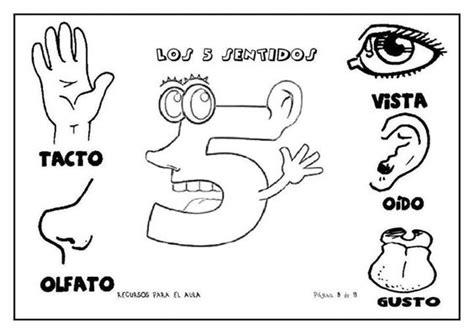 imagenes infantiles sobre los sentidos im 225 genes educativas para ni 241 os escolares 50 tarjetas