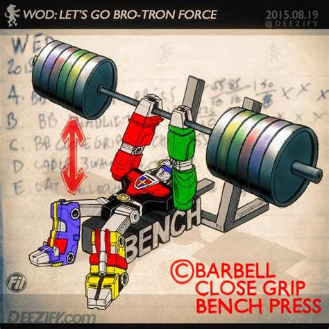 exrx close grip bench 17 best images about antigordura on pinterest olympia