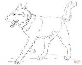 husky coloring pages image gallery husky coloring pages
