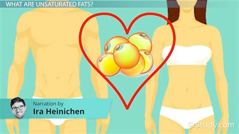 definition of healthy fats unsaturated fats definition sources exles