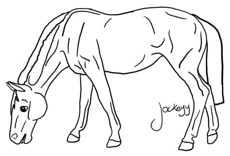 Breyer Horse Coloring Pages Az Coloring Pages Breyer Coloring Pages