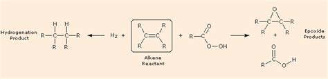 1 hexene hydration alkene reactivity