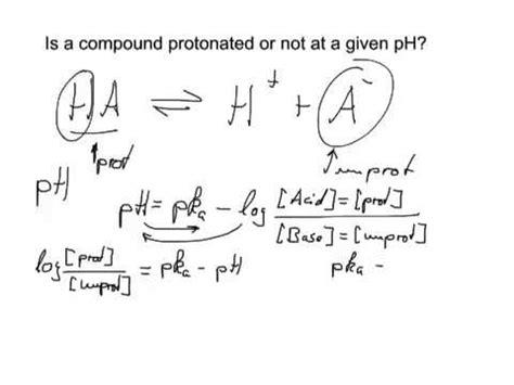 Protonated Definition by Biochemsnacks Protonated Or Not