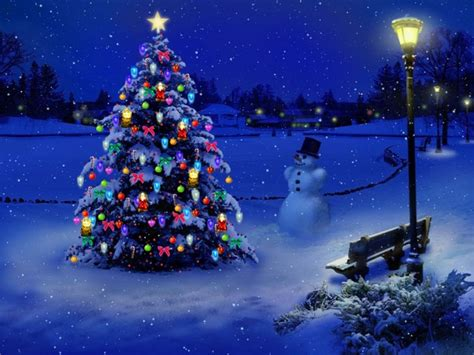 snowy christmas night bench blue christmas christmas