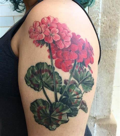 geranium tattoo designs best 25 geraniums ideas on
