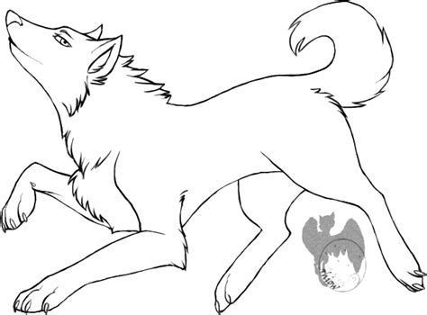 wolf template wolf template by rhiow on deviantart