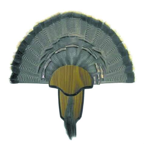 turkey fan and beard mounting kit hunter s specialties turkey tail and beard fan mounting