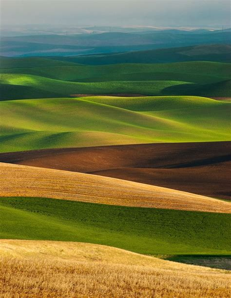 Green Mba Washingston State by Palouse Layers By Thorsten Scheuermann On 500px Green 풀잎
