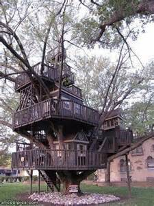 best tree houses best tree house ever cool pictures