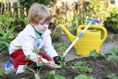 the family garden gardening with your foster child
