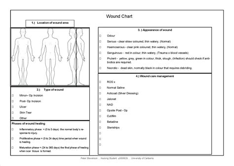 Diagram Wound Assessment Diagram Wound Care Documentation Template