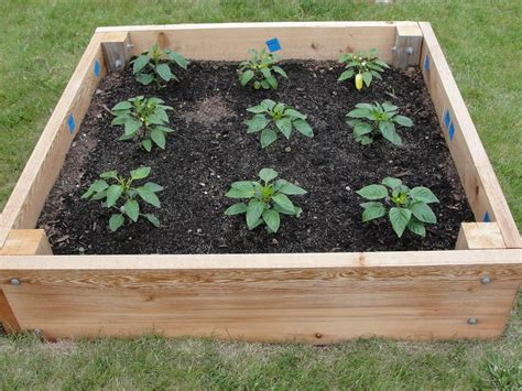raised bed garden plans how to plan a raised garden bed