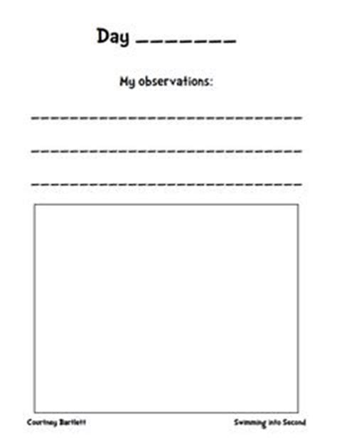 printable science observation journal 1000 images about plant observation project on pinterest