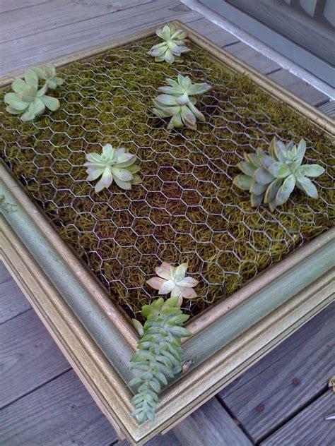 25 best ideas about vertical succulent gardens on
