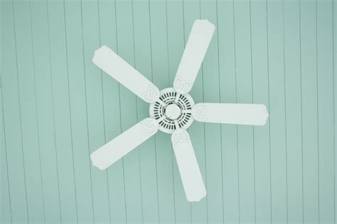best buy ceiling fans the 7 best ceiling fans to buy in 2018