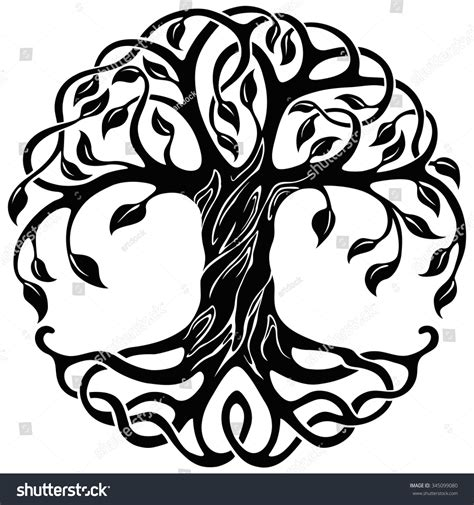 Trees And Their Meanings by Vector Ornament Decorative Celtic Tree Of Life