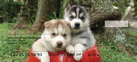 Sled Background Check Sled Dogs Personal Checks