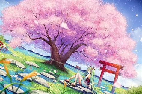cherry tree anime 126 best images about anime on trees cherry blossom tree and anime scenery