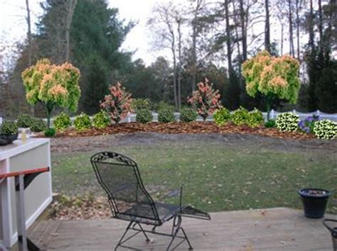 Backyard Fence Landscaping Ideas by Help Landscaping Along A Fence