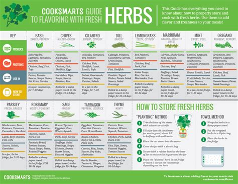 seasoning savvy how to cook with herbs spices and other flavorings books cooking guides for using herbs and spices goodfoodmama
