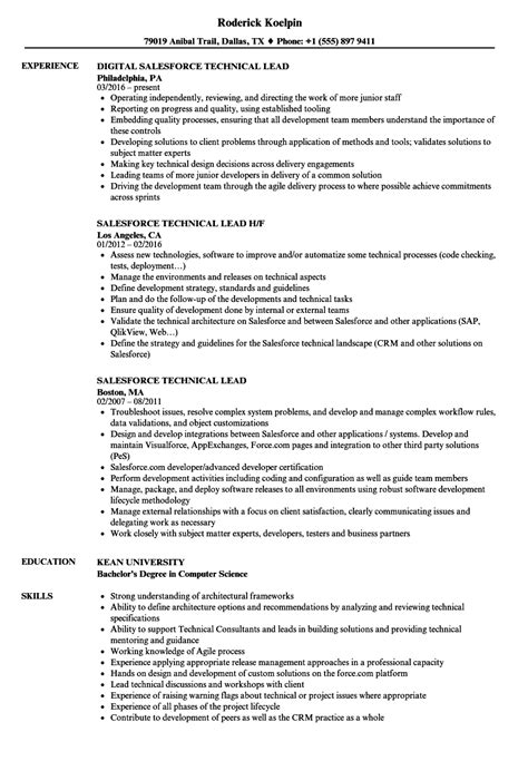 resume examples information technology