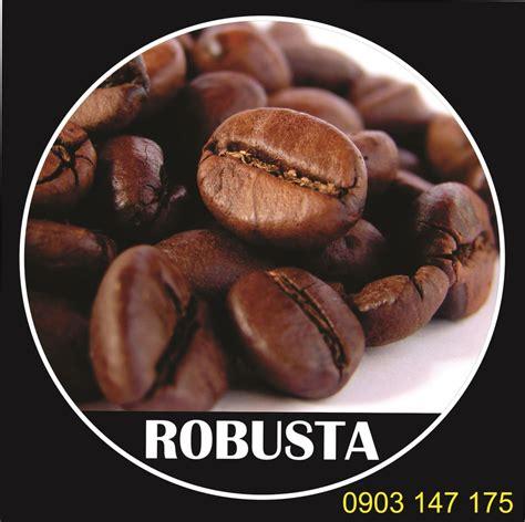 c 224 ph 234 hạt robusta