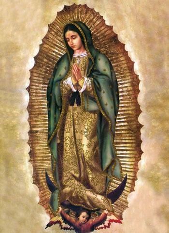 imagenes de la virgen de guadalupe reales virgen de guadalupe historia oraci 243 n interpretaci 243 n
