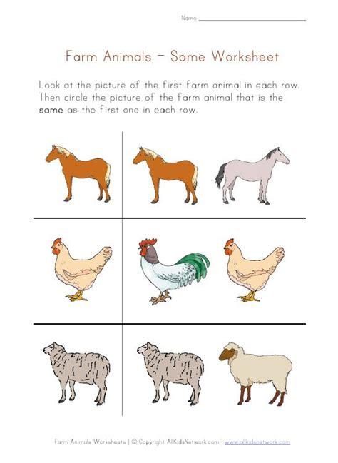 preschool same worksheet prek work