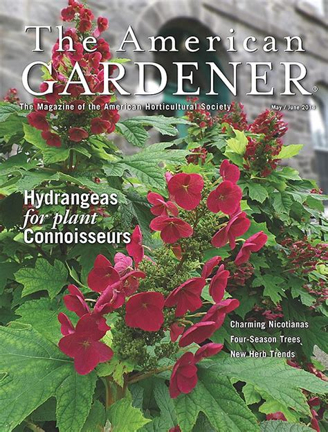 1000 images about the american gardener magazine on pinterest