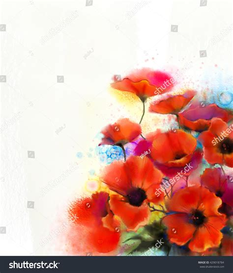 watercolor poppy flower painting stock illustration 429018784