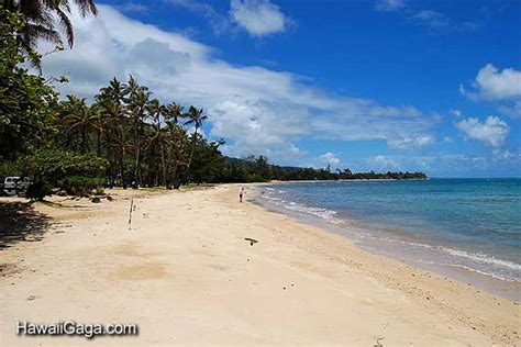 punaluu beach punaluu hawaii oahu image search results