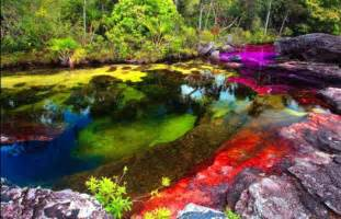 river of 5 colors river of 5 colors cano cristales colombia 160 pieces