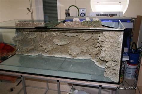 aquarium umzug firma aufbau sonnen riff sonnen riff de