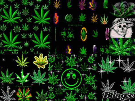 imagenes animadas weed weed animation fotograf 237 a 60705375 blingee com